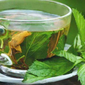 Gyógynövény és élvezeti teák
